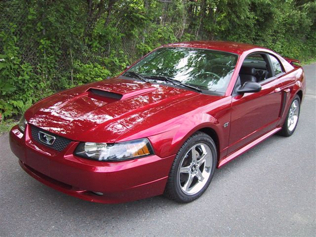 Image courtesy of nationalmustang.com