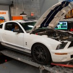 2009 Shelby GT500 at Mustang Mayhem