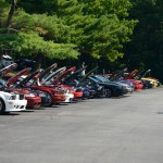 Car Show Mustang Line