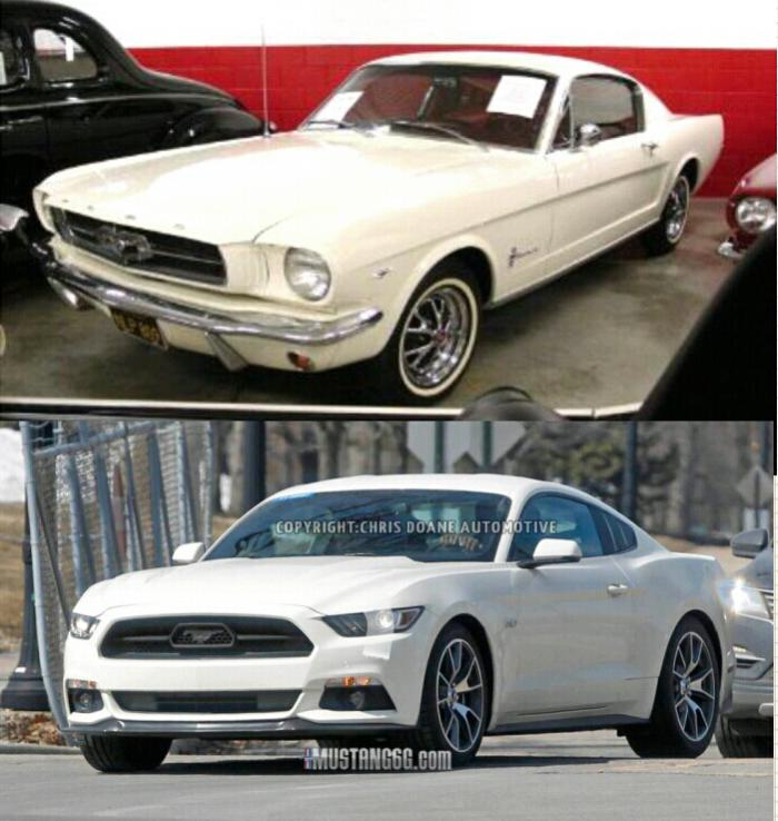 Spied The 20145 Anniversary Edition Ford Mustang