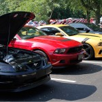 Mustangs at AmericanMuscle Mustang Show