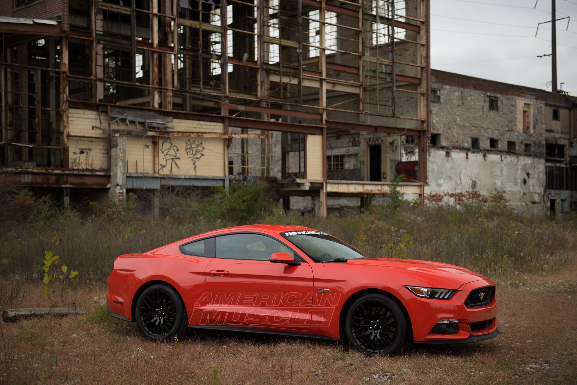 Video: AmericanMuscle's Official Review Of The 2015