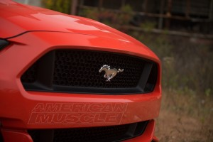 2015 Mustang GT Front Grille - Stock
