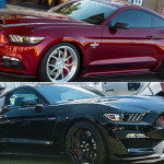 2015 Shelby GT350R vs 2015 Shelby Super Snake Mustang